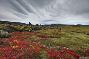 Atmospheric disturbances at Reykjanes