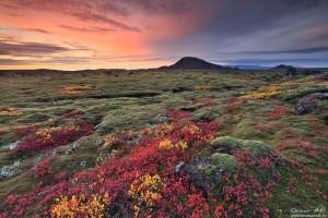 Burst of Colors near Helgafell.