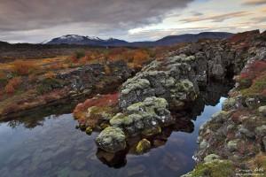 Lava Fields of Þingvellir National Park in Fall Colors